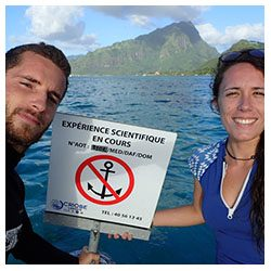 https://coralmates.criobe.pf/wp-content/uploads/2020/08/July_1_Coralmates_Squares-250x250.jpg